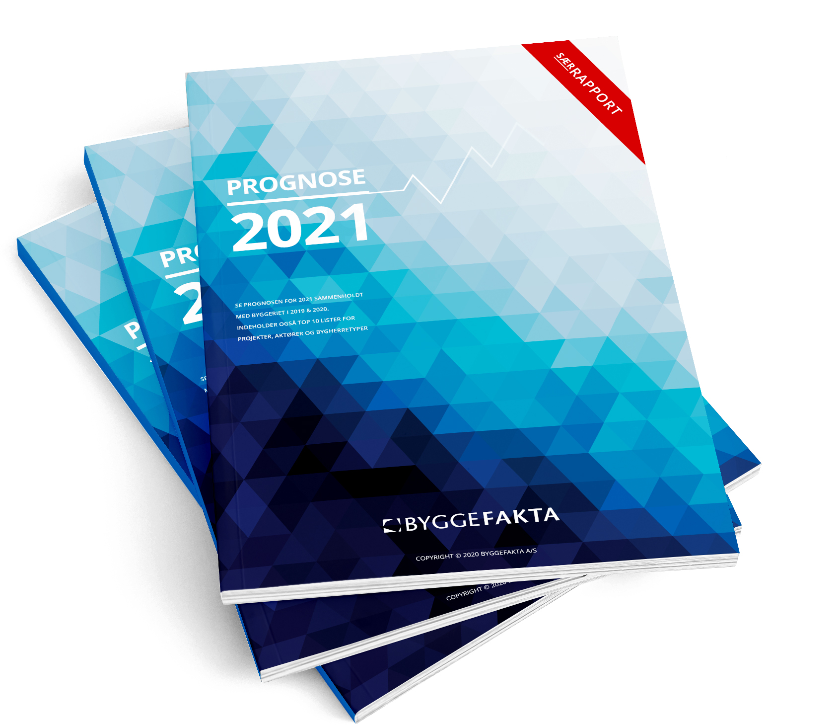 prognose2021-3rapporter-stablet
