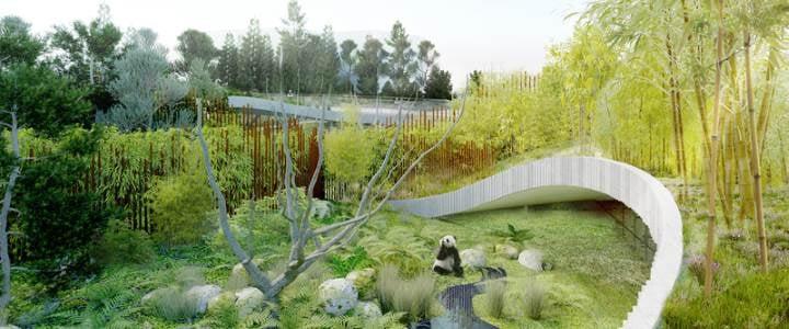 Det nye panda-anlæg i Zoologisk Have har Bjarke Ingels Group som arkitekt